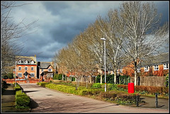 Nantwich Drive, Daventry (Jason 87030) Tags: nantwichdrive afternoon emporiuym estate langfarm daventry northantrs northamptonshire light slouds weather 2019 march trees naked bare branches trunk bark lighting rain houses road shadows uk england frame border lamp postbox mail
