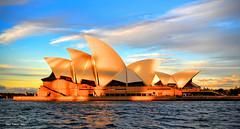 Sydney Opera House, Bennelong Point, Sydney, NSW 101-2 (Black Diamond Images) Tags: sydney nsw australia sydneyoperahouse operahouse sydneyharbour harbourview circularquay architecture design