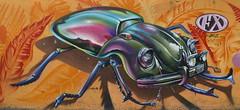 The Mexican beetle - Vocho (chriskatsie) Tags: mariquita beetle coccinelle car voiture coche art streetart graffiti paint peinture color couleur koka mexicain vocho