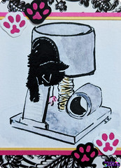SerenaAzureth_ATC_BlackCat_Playhouse2 (SerenaAzureth) Tags: serenaazureth handdrawn drawing sketch watercolor acrylic paint pen atc artist trading card swapbot swap bot blackcat black cat kitty silly cute playhouse play scratch cattoy toy