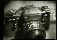 'flex (O9k) Tags: analog analogue leica leitz focus oof bokeh summicron leicaflex reflex cameraporn tabletop gas camera erno ernolux projectorlens 75mm 25 peco plaubel largeformat9x12