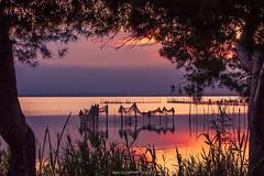 Un Marco Incomparable (E.Cano) Tags: sun sunset dawn warm lake water reflex reflection trees nature naturescape natural longexposure sky clouds april spring albufera valencia spain