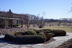 National Herb Garden in winter: Knot Garden and grape arbor, US National Arboretum, Washington, DC (jmlwinder) Tags: inwinter nationalherbgarden usnatonalarboretum