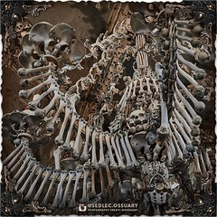 In 2016, for the first time in 150 years, the ossuary was left without its centerpiece, when the chandelier was taken down for cleaning and reinforcement as part of the ongoing ossuary renovations. (To be continued...) . 💀 Sign up on our mailing lis (Sedlec Ossuary Project) Tags: sedlecossuaryproject sedlec ossuary project sedlecossuary kostnice kutnahora kutna hora prague czechrepublic czech republic czechia churchofbones church bones skeleton skulls humanbones human mementomori memento mori creepy travel macabre death dark historical architecture historicpreservation historic preservation landmark explore unusual mechanicalwhispers mechanical whispers instagram ifttt