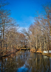 1 Wednesday Walk around the duck pond (Singing With Light) Tags: 2019 27thjanuary a7iii ct foudnersway milford mirrorless singingwithlight sonya7iii street sunday aroundmilford cloudy cool morning photography singingwithlightphotography sony walk