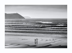 CONSTITUTIONAL (Barry Haines) Tags: flickrsbest cornwall stepper point sea sky mono walking strolling constitutional dog
