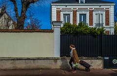 2019-03-17 - Dimanche - 76/365 - Ca marche - (Christophe Maé & Leslie) (Robert - Photo du jour) Tags: 2019 mars france maison ciel bleu camarche christophemaéleslie marché caddie frmme fontenaysousbois retour