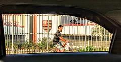 flamengo (lucia yunes) Tags: flamengo bicicleta janela timedocoração cenaderua fotografiaderua fotoderua mobilephoto mobilephotography streetshot streetscene street lifeinstreet bike motozplay luciayunes
