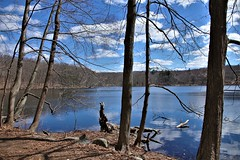 Teatown Lake Reservation #11 (Keith Michael NYC (5 Million+ Views)) Tags: teatownlakereservation ossining newyork ny nyc