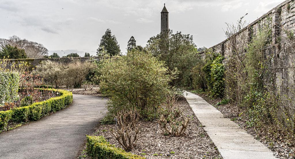 THE BOTANIC GARDENS IN GLASNEVIN DUBLIN [ TODAY I USED A VOIGTLANDER 40mm F1.2 LENS]-150680