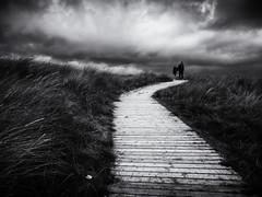 On the Boardwalk (Feldore) Tags: boardwalk castlerock beach sand dunes northern ireland irish moody sky stormy walk walking feldore mchugh em1 olympus 1240mm