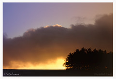 Over the Hill ...... (Elisafox22) Tags: elisafox22 sony rx10m3 hills hillside dawn sun clouds trees silhouette stormclouds 2019 newyear scotland brexit uk bokeh songs elisaliddell©2019