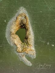 The Hole (Jamarem) Tags: macromonday hole abstract bus shelter perspex corrosion burn through macro closeup holes