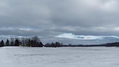 Clouds, breaking up (joeldinda) Tags: cloud sky woodlot fields winter roxana snow weather farmyard omd em1ii 4465 tree em1 february roxandtownship omdem1mkii olympus michigan eatoncounty 2019