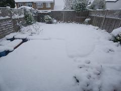 Snow Day, 2019-02-01 (anachrocomputer) Tags: dmcg7 918mm snow stokegifford