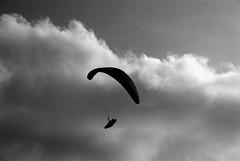 In volo (in flight) (pjarc) Tags: europe europa italy italia veneto grappa involo inflight parapendio paragliding uomo man foto photo bw black white sky cielo nuvole clouds silhouette sport 2018 nikon dx settembre september