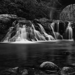 Waterfall mono (Marion McM) Tags: arbilotfalls arbroath arbilot water waterfall rocks longexposure monochrome blackandwhite angus scotland canoneos6dmk11 2019 landscape