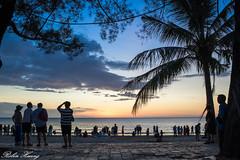 DSC_6383 (Robin Huang 35) Tags: 亞庇縣 沙巴 馬來西亞 my sabah malaysia 亞庇 丹絨亞路 海灘 沙灘 海岸 海邊 夕陽 nikon d850 beach