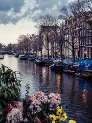 A0153099 (rpajrpaj) Tags: amsterdam city netherlands nederland nederlandvandaag bluehour thebluehour cityscape citylights