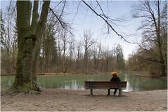 Happy Bench Monday! (Janos Kertesz) Tags: bench munich bavaria englishgarden lake tree baum teich englischergarten münchen bayern bank