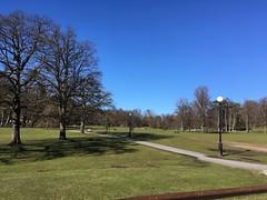 Slottsskogen (rotabaga) Tags: sverige sweden göteborg gothenburg slottsskogen park iphone