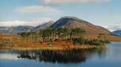 Ireland (M McBey) Tags: ireland galway countryside hill lake reflection nikkormatftn 50mmf20ai kodachrome