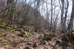 Hike to Mont Baret (*_*) Tags: nature mountain hiking montagne randonnée trail marche walk montbaret bornes afternoon march spring printemps 2019 forest europe france hautesavoie 74 savoie annecy summit sommet sunny