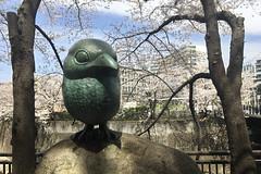 untitled (t-miki) Tags: itabashi tokyo 板橋 東京