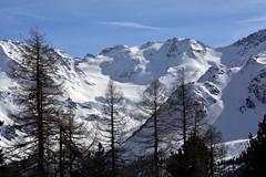 In cammino nel bosco nella quiete dell'inverno (giorgiorodano46) Tags: marzo2019 march 2019 giorgiorodano solda sulden altoadige sudtirolo italy inverno winter hiver neve snow