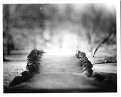 Spring grove bridge darkroom print (edewbank) Tags: aeroektar