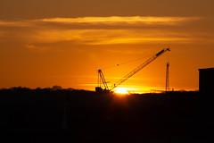Sundown 15 Feb 2019 (Sculptor Lil) Tags: cranes london sunset canon700d