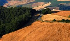 Campania - Italy (michele_carbone) Tags: campania canon100d italy landscape green hill field