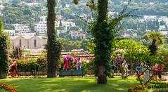 Capri (sklachkov) Tags: capri italy islandlife islands photography parks