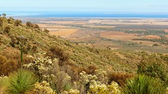 It's all downhill from here!  Bridle Trail, Southern Flinders, South Australia (Red Nomad OZ) Tags: bridletrail landscape nature natural outdoor scenery southaustralia australia farm farmland agriculture grasstree southernflindersranges flinders flindersranges spencergulf