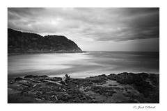 Yachats Bay, Oregon (Jack Pickell) Tags: ocean shore sea surf waves water landscape nature oregon rocks d750 blackwhite