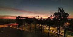 Amaneceder desdel la 220 del Xanit de Benalmádena (woto) Tags: vithas xanit benalmádena hospital cielo sky sun málaga spain palmeras amanecer árbol panorami panorámica hdr