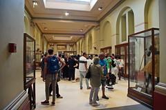 Ägyptisches Museum in Kairo (Magdeburg) Tags: ägypten egypt egypte مصر египет ägyptisches museum kairo ägyptischesmuseuminkairo ägyptischesmuseumkairo ägyptischesmuseum egyptian cairo egyptianmuseumincairo egyptianmuseumcairo egyptianmuseum