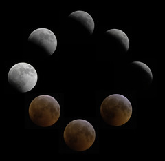 Lunar Eclipse 2019 (Eric Kilby) Tags: full lunar eclipse 2019 blood wolf super phases composite