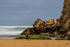P2252014 Gables to 12 Apostles (Dave Curtis) Tags: longexposure sea sand ocean beach victoria greatoceanwalk 2014 australia em5 omd olympus places september