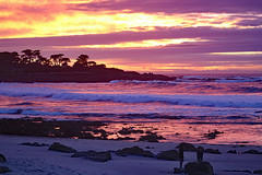 Christmas Sunset in Pacific Grove, CA December 2018 (Northwest Lovers) Tags: california pacificgrove highway1