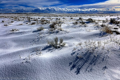 Snow Drifts and Shadows, Wasco County, OR (4 Corners Photo) Tags: 4cornersphoto clouds cold drift landscape mountains nature northamerica oregon outdoor prairie rabbitbrush rural sagebrush scenery shadow snow snowdrift unitedstates wascocounty weather wind winter