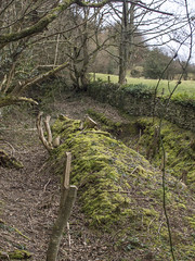 (Turbogirlie) Tags: walk1000miles walkinginthecountryside welshmarches winter winter2019 february2018 trees adobephotoshop adobecs6 getoutside olympusuk olympuse5 footpaths publicfootpaths publicrightsofway woods nature hayonwye haybluff powys offasdyketrail offasdykepath offasdyke