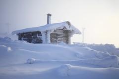 Probably the Coldest Hut in Lapland (K M V) Tags: cold snow hut winter lapland finnishlapland levi lumi lunta kylmä rakennus talvi lappi lappland schnee kalt vinter kallt snö lhiver neige froid inverno neve freddo invierno nieve light lumière valo ljus luce licht