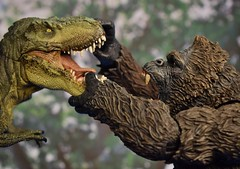 Mezco Kong battles Papo T-Rex! (FranMoff) Tags: actionfigures toys dinosaur trex flickr kingkong gorilla dinosaurs ape papo tyrannosaurusrex skullisland monsters mezco willisobrien