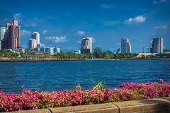 Benjakiti lake with skyline and Bougainvilleas in Bangkok, Thailand (UweBKK (α 77 on )) Tags: benjakiti park lake water blue sky skyline building skyscraper architecture recreation rest bougainvillea flower blossom city urban bangkok thailand southeast asia sony alpha 77 slt dslr