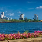 Benjakiti lake with skyline and Bougainvilleas in Bangkok, Thailand thumbnail