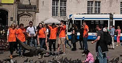 D'andere Blik: Alle duiven op de Dam (Peter ( phonepics only) Eijkman) Tags: amsterdam city combino gvb tram transport trams tramtracks trolley rail rails strassenbahn streetcars nederland netherlands nederlandse noordholland holland