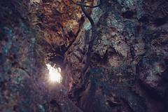 KRIS7985 (Chris.Heart) Tags: erdő buda budapest túra természet forest nature hiking