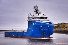 Sea Tantalus - Aberdeen Harbour Scotland - 21/03/2019 (DanoAberdeen) Tags: cargoships workboats seafarers offshore aberdeenscotland aberdeen danoaberdeen amateur candid supplyships seatantalus