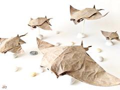 Ray by Kamiya satoshi (yoan.remy) Tags: origami fish ray kamiyasatoshi paper